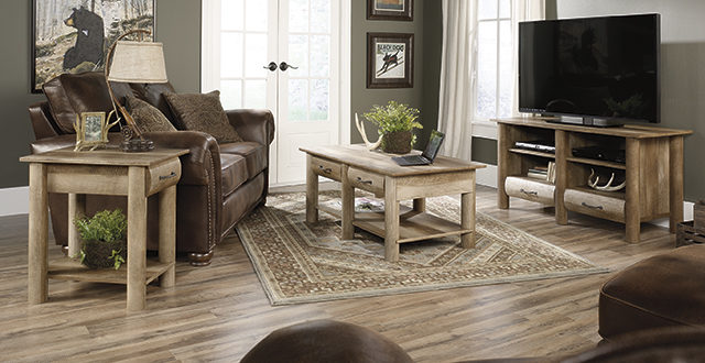 Sauder Collections The Furniture Co
